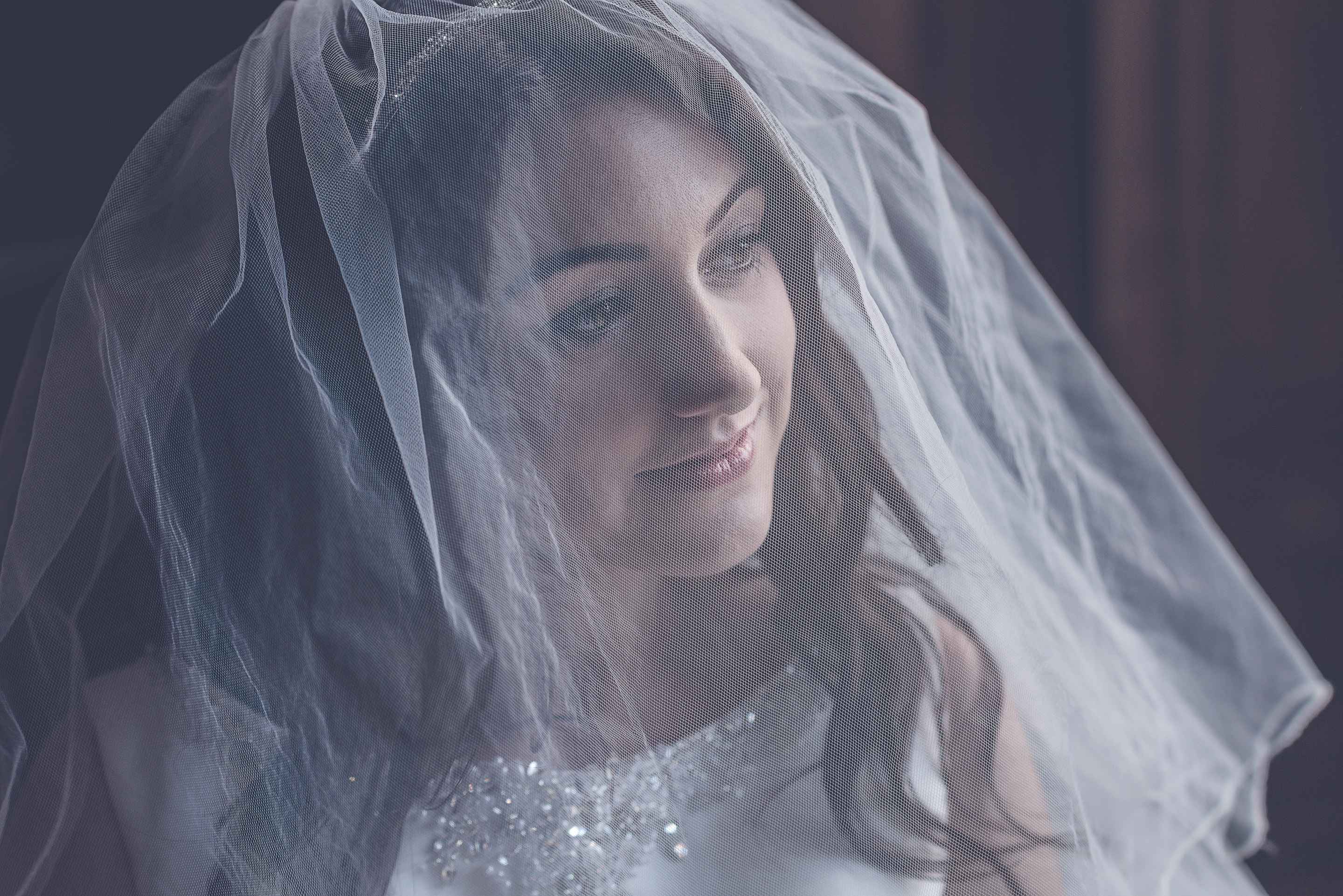 Wedding Photography bride showcasing veil set in historic mansion