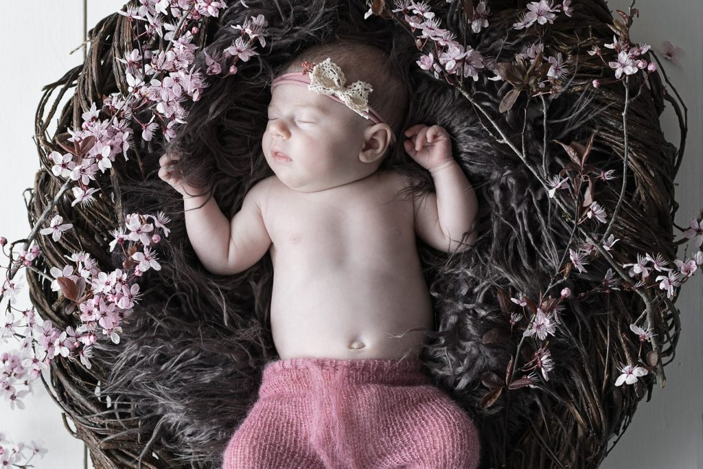 Newborn portrait photography baby girl posed with pink blossom in wicker nest